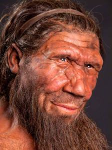 Re-creation of Neanderthal man in London's Natural History Museum. The resemblance to the author is unmistakable.